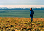 ARCTIC NATIONAL WILDLIFE REFUGE, ALASKA, USA. Hiker looks across Arctic Coastal Plain to pack ice on the Arctic Ocean. View from foothills of Sadlerochit Mountains. North Slope.