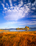 MONO LAKE RESERVE, CALIFORNIA, USA. Altocumulus clouds above rushes and tufa on shore of Mono Lake.