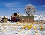 UTAH. USA. Barn and farmyard in winter. Cache Valley.
