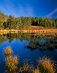 Moon reflected in beaver pond in flood plain of Hayden Fork of the Bear River in autumn. Uinta Mountains. Wasatch-Cache National Forest.