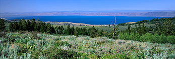 View of Bear Lake and Bear Lake Valley from Bear River Range in summer. Wasatch-Cache National Forest. Sagebrush and forest of limber pines and spruce on slopes in foreground.