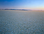 BLACK ROCK DESERT / HIGH ROCK CANYON EMIGRANT TRAILS NATIONAL CONSERVATION AREA, NEVADA. USA. Cracked mud surface of playa at sunrise. Black Rock Desert. Lake bed of ancient Lake Lahontan.