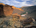 UTAH. USA. Saltbush & sandstone above Green River. Gray Canyon. Proposed Book Cliffs-Desolation Canyon BLM Wilderness.