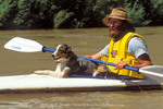 GLEN CANYON NATIONAL RECREATION AREA, UTAH. USA. Kayaker & canine friend on the San Juan River.