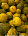 "UTAH. USA. Casaba melons for sale at farmer's roadside stand. Along northern Utah's ""Fruit Way""."