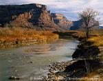 UTAH. USA. Along the San Rafael River in autumn. San Rafael Swell. Proposed San Rafael Swell BLM Wilderness. Colorado Plateau.