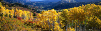 UTAH. USA. View down Nebo Creek drainage in autumn. Wasatch Mountains. Uinta-Wasatch-Cache National Forest.
