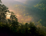 CLIFTY WILDERNESS, KENTUCKY. USA. Fog at sunrise. Red River Gorge. Daniel Boone National Forest.