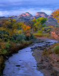 UTAH. USA. Pleasant Creek in autumn at sunrise. Capitol Reef Reef in the distance. Near boundary of Capitol Reef National Park. Colorado Plateau.