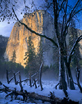 YOSEMITE NATIONAL PARK, CALIFORNIA. USA. Light of winter sunset on El Capitan. View from El Capitan Meadow. Yosemite Valley. Sierra Nevada.