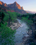 ZION NATIONAL PARK, UTAH. USA. The Watchman at sunset above Virgin River in spring.