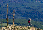 UTAH. USA. Hiker near Bowns Point. On the rim of Boulder Mountain. Dixie National Forest.