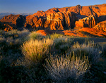 SNOW CANYON STATE PARK, UTAH. USA. View into Snow Canyon at sunrise. Red Mountain in distance.