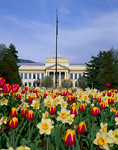 UTAH. USA. Spring flowers & John Park Building (built 1914). President's Circle, University of Utah. Salt Lake City.