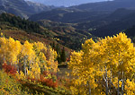 UTAH. USA. View down Nebo Creek drainage in autumn. Wasatch Mountains. Uinta National Forest.