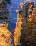 GRAND CANYON NATIONAL PARK, ARIZONA. USA. Pillars of Kaibab Limestone on rim of Grand Canyon near Point Sublime. North Rim.
