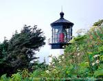 OREGON. USA. Lighthouse at Cape Meares. Pacific Coast.