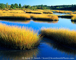 MAINE. USA. Salt marsh at sunrise. Estuary of New Meadow River in early autumn.