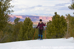 UTAH. USA. Woman snowshoeing through ponderosa pine trees. Boulder Mountain. Dixie National Forest. Cliffs of Fremont River Valley & Capitol Reef National Park in distance.