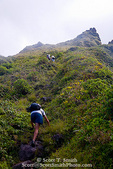 MARTINIQUE. French Antilles. West Indies. Hikers on steep trail below summit of Mt. Pelée.