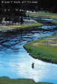 YELLOWSTONE NATIONAL PARK, WYOMING. USA. Fisherman in the Firehole River.