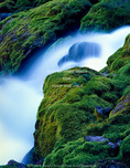 WYOMING. USA. Periodic Spring during period of low flow. Water flows in pulses from spring.