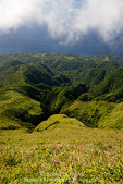 MARTINIQUE. French Antilles. West Indies. Rugged gorges carved into flanks of Mt. Pelée.