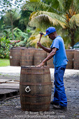MARTINIQUE. French Antilles. West Indies. J.M. Distillery in Macouba. Worker re-assembles oak aging barrels after they are opened & burned on the inside in preparation for filling with rum.
