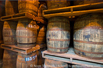 MARTINIQUE. French Antilles. West Indies. St. Pierre. Oak aging barrels full of rum. Depaz rum distillery.