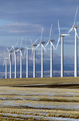 OREGON. USA. Wind farm near Condon. Wind turbines owned by Bonneville Power Admin. 197 foot towers; 155 foot diameter rotors. 83 turbines produce 50 MW peak