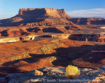 CANYONLANDS NATIONAL PARK, UTAH. USA. View of Junction Butte & White Rim from Murphy Hogback. Along White Rim Trail. Island in the Sky District.