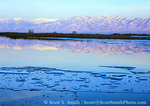 UTAH. USA. Ice floating on Logan River at dusk in winter. Cache Valley. Bear River Range in distance.