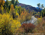 UTAH. USA. South Fork Ogden River in autumn. Wasatch Mountains. Wasatch-Cache National Forest.