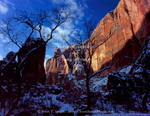 ZION NATIONAL PARK, UTAH. USA. Morning light on cliffs at Temple of Siniwava in winter. Zion Canyon.