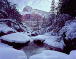 ZION NATIONAL PARK, UTAH. USA. Deep snow at Middle Emerald Pools. Zion Canyon.