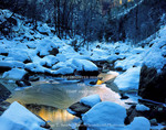 ZION NATIONAL PARK, UTAH. USA. Lower Emerald Pools in winter. Zion Canyon.