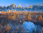 MONO BASIN NATIONAL FOREST RESERVE, CALIFORNIA. USA. Fresh snow on tufa formations & cattails at sunrise. Shore of Mono Lake. Mono Basin. Inyo National Forest.