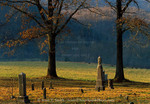 BUFFALO NATIONAL RIVER, ARKANSAS. USA. Old cemetery at sunrise in early spring. Boxley Valley near Buffalo River.
