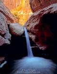 Capitol Reef National Park, Utah. USA. Waterfall in Sulphur Creek Gorge.
