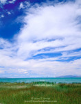 RENDEZVOUS BEACH STATE PARK, UTAH. USA. Cirrus clouds above sedges & Bear Lake. Rendezvous Beach.