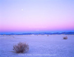 Nevada. USA. Moon over alkali playa at dawn. Railroad Valley. Great Basin.