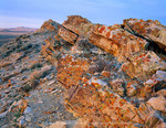 Wyoming. USA. Lichen on tilted rock. Great Divide Basin. Red Desert.