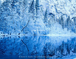 Yosemite National Park, California. USA. Fresh snow on trees & cliffs along Merced River. Yosemite Valley. Sierra Nevada.