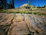 High Uintas Wilderness, Utah. USA. Glacier-polished quartzite bedrock below Mount Agassiz. Head of Stillwater Fork of Bear River drainage. Uinta Mountains. Wasatch National Forest.
