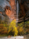 Zion National Park, Utah. USA. Ephemeral waterfall pours over cliff above Virgin River during autumn rain storm. Temple of Sinawava, Zion Canyon. Colorado Plateau.