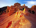 Utah. USA. Eroded limestone pinnacles & slopes at sunset. Red Canyon. Dixie National Forest.