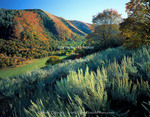 Utah. USA. Sagebrush on slopes above Narrow Hollow in autumn. View of 603-acre formerly private property acquired by US Forest Service in 2005. Wellsville Mountains. Uinta-Wasatch-Cache National Forest.