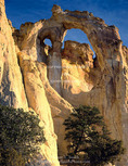Grand Staircase-Escalante National Monument, Utah. USA. Grosvenor Arch.