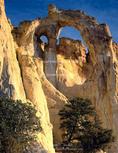 Grand Staircase-Escalante National Monument, Utah. USA. Grosvenor Arch.