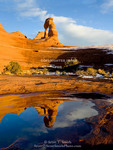 Arches National Park, Utah. USA. Delicate Arch reflected in melt water pool.